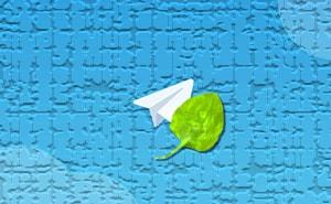 Обход браузерной блокировки Telegram-min