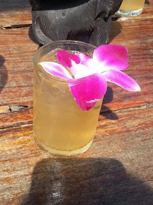 Бесплатный напиток в Полете Гиббона