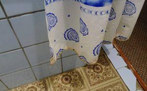 Шторка в ванной Бузим